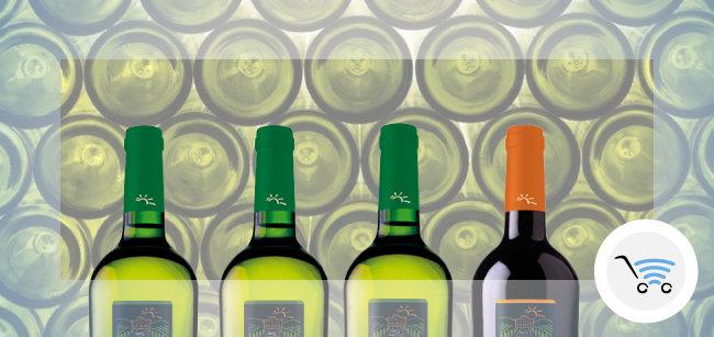 bottiglie di vino areagroup
